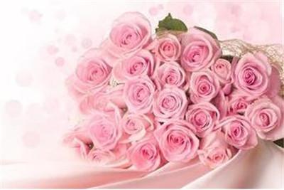 33朵粉玫瑰花语