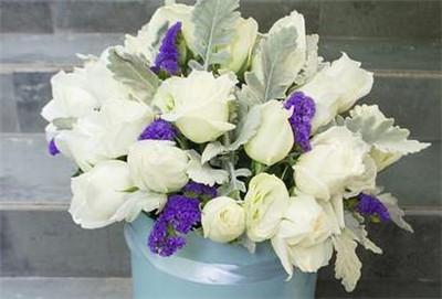 66朵白玫瑰花语