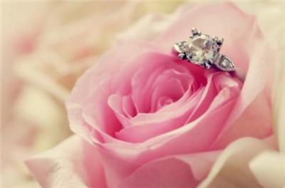 21朵粉玫瑰花语