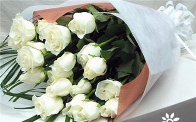33朵白玫瑰花语